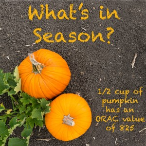 Whats In Season