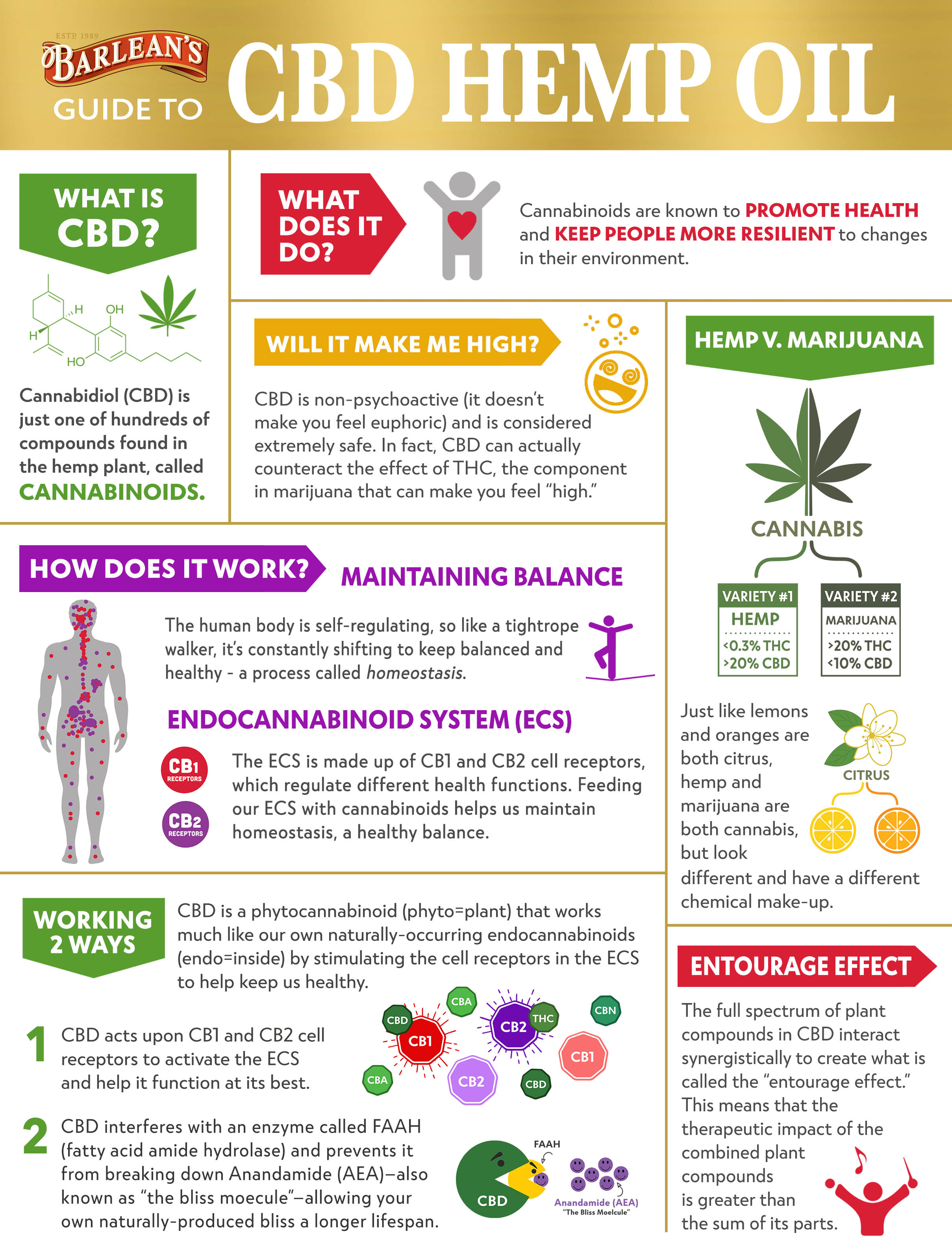 CBD Infographic Pg 1 Update April 2019-1