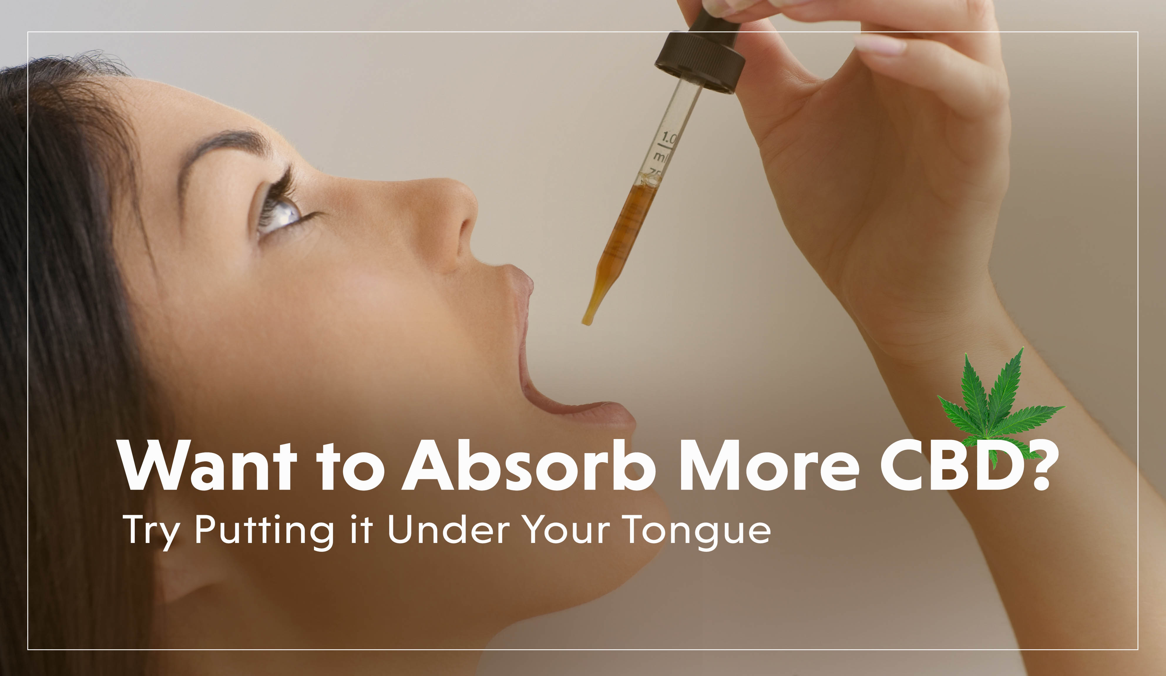 How to Absorb More CBD