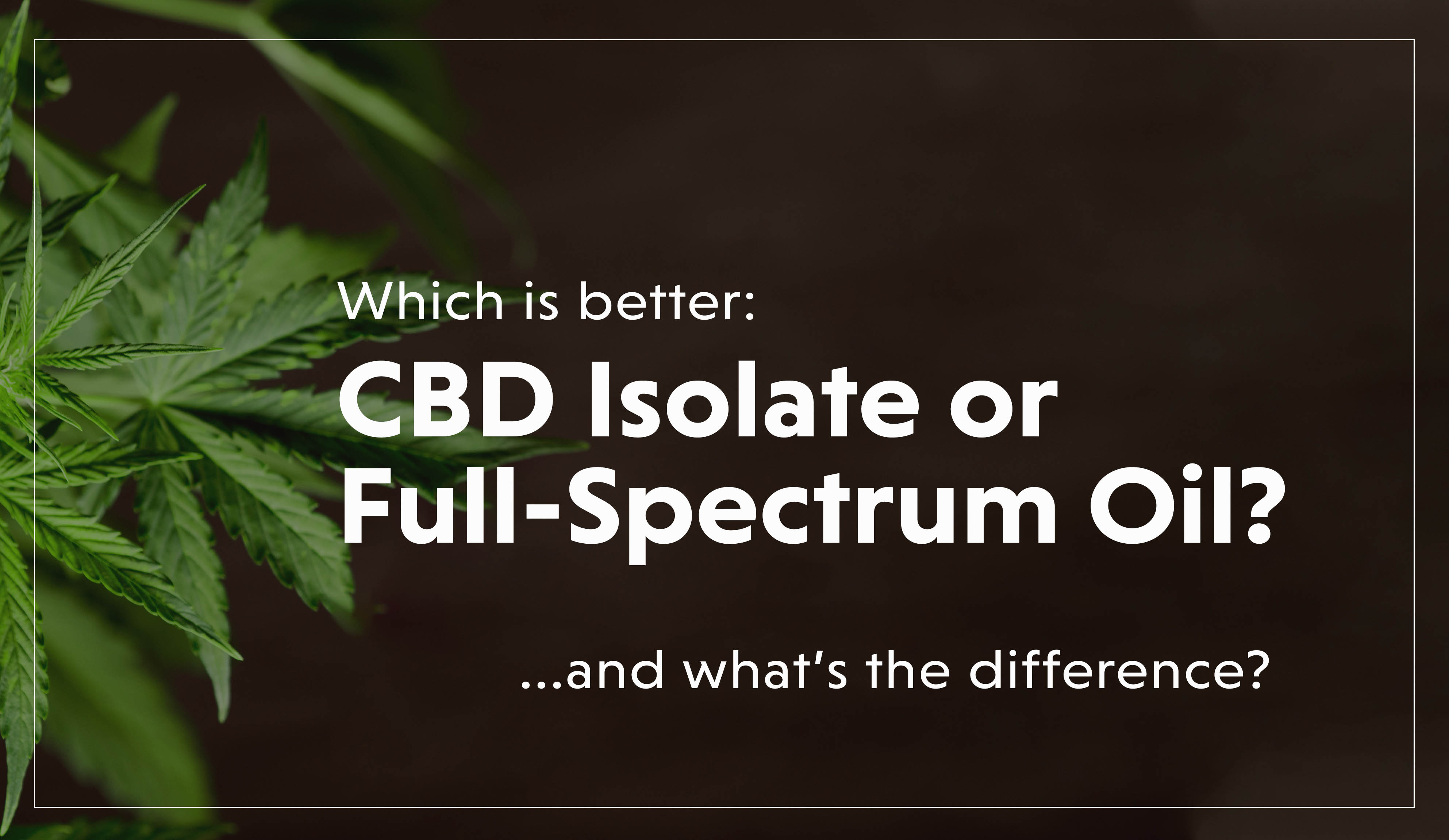 Isolate v Full Spectrum-1