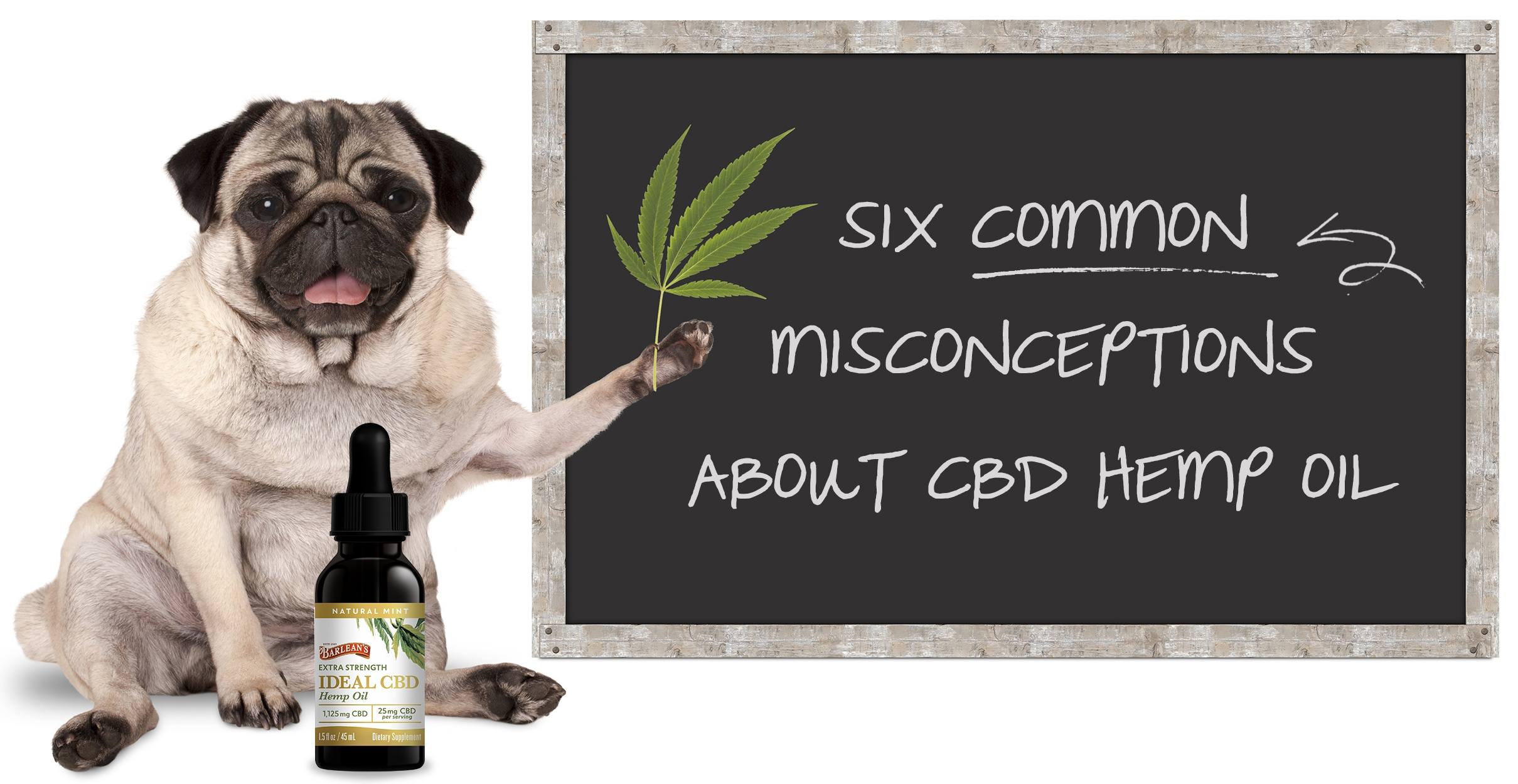 Miconcpetions About CBD