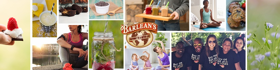 Barleans Who we are as a company